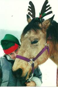 Matt Dillon, my first horse who came to live with us when I was 55.